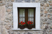 Residential housing with flowers in windows in Cangas de Oni... von Danita Delimont