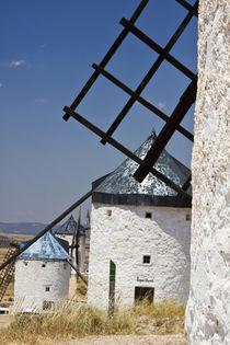 Europe, Spain, Castile-La Mancha Region, Toledo Province, Consuegra by Danita Delimont