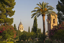 Europe, Spain, Granada, Alhambra by Danita Delimont