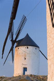Windmills in Ciudad Real Province, Castilla La Mancha, Spain von Danita Delimont