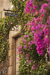 Spain, Extremadura Region, Caceres Province, Caceres, Ciudad... von Danita Delimont