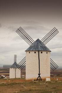 Spain, Castile-La Mancha Region, Ciudad Real Province, La Ma... von Danita Delimont