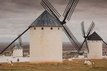 Spain, Castile-La Mancha Region, Ciudad Real Province, La Ma... by Danita Delimont