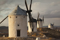 Spain, Castile-La Mancha Region, Toledo Province, La Mancha ... von Danita Delimont