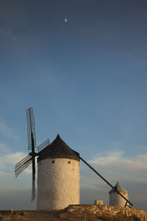 Spain, Castile-La Mancha Region, Toledo Province, La Mancha ... by Danita Delimont