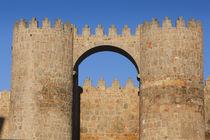 Spain, Castilla y Leon Region, Avila Province, Avila, Las Mu... von Danita Delimont