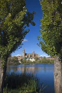 Spain, Castilla y Leon Region, Salamanca Province, Salamanca... von Danita Delimont