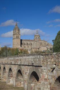 Spain, Castilla y Leon Region, Salamanca Province, Salamanca... by Danita Delimont