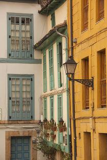 Spain, Asturias Region, Asturias Province, Oviedo, town architecture by Danita Delimont