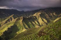 Spain, Canary Islands, La Gomera, Valle de Hermigua, mountai... von Danita Delimont