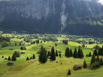 Switzerland, Bern Canton, Grindelwald, Alpine farming community by Danita Delimont