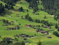 Switzerland, Bern Canton, Grindelwald, Apline farming community von Danita Delimont
