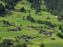Switzerland, Bern Canton, Grindelwald, Apline farming community by Danita Delimont