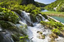 Plitvice Lakes, Croatia von Danita Delimont