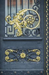 Parliament Door von Danita Delimont