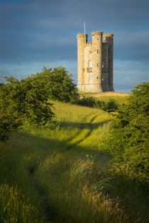 Early morning at Broadway Tower, the Cotswolds, Worcestershi... by Danita Delimont