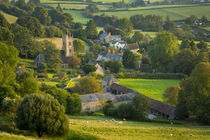 Evening sunlight over Corton Denham, Somerset, England von Danita Delimont