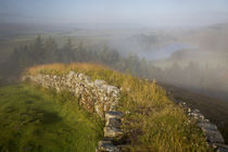 Dawn at Hadrian's Wall near the Roman fort at Housesteads, N... by Danita Delimont