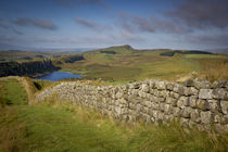 Dawn at Hadrian's Wall near the Roman fort at Housesteads, N... von Danita Delimont