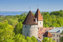 View of Tallinn from Toompea hill, Old Town of Tallinn, UNES... von Danita Delimont