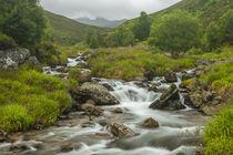 Europe, Scotland, Cairngorm National Park by Danita Delimont