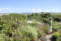 Kierfiold House Gardens, Sandwick, Orkney Islands by Danita Delimont