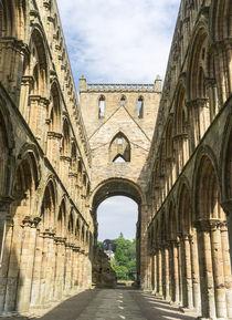 Jedburgh Abbey, Scotland by Danita Delimont