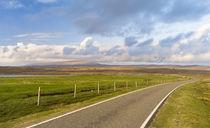 Ronas Hill, Northmavine, Shetland, Scotland von Danita Delimont
