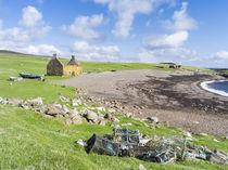 Landscape on Eshaness, Shetland, Scotland von Danita Delimont