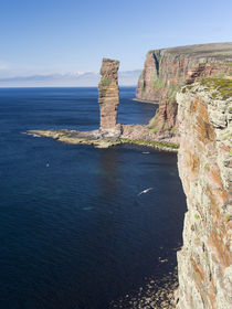 Old Man of Hoy, Orkney Islands, Scotland, UK by Danita Delimont