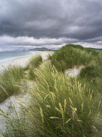 Isle of Berneray, North Uist, Scotland by Danita Delimont