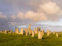 Standing Stones of Callanish, Schottland von Danita Delimont