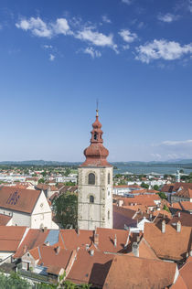 Ptuj Old Town by Danita Delimont