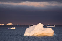 Icebergs at sunrise, Cape York, West Coast of Greenland by Danita Delimont