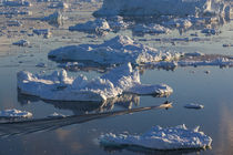 Greenland, Disko Bay, Ilulissat, elevated view of floating i... von Danita Delimont