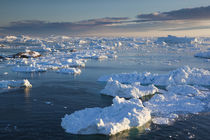 Greenland, Disko Bay, Ilulissat, elevated view of floating ice by Danita Delimont