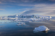 Greenland, Disko Bay, Ilulissat, floating ice at sunset by Danita Delimont