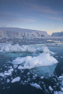 Greenland, Disko Bay, Ilulissat, floating ice at sunset with moonrise by Danita Delimont