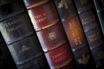 Collection of classic antique books from historic authors. by Danita Delimont