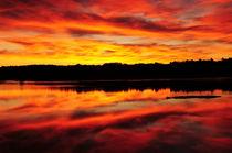Sunset by Danita Delimont