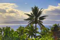 Sunset, Taveuni, Fiji von Danita Delimont