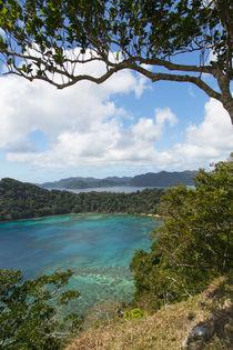 Matangi Private Island Resort, Fiji von Danita Delimont
