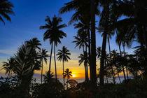 Sunset, Taveuni, Vanua Levu in Background, Fiji by Danita Delimont