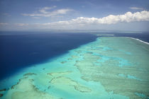 Malolo Barrier Reef off Malolo Island, Mamanuca Islands, Fij... von Danita Delimont