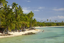 Beach, palm trees and beachfront bures, Plantation Island Re... von Danita Delimont