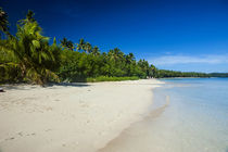 White sand beach and turquoise water at the Nanuya Lailai Is... von Danita Delimont