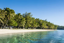 White sand beach, Nanuya Lailai island, the blue lagoon, Yas... von Danita Delimont