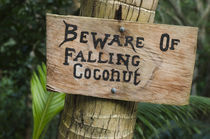 Danger sign, Fiji. by Danita Delimont