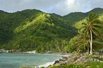 Vatia Bay on Tutuila Island, American Samoa. von Danita Delimont