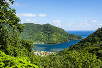 National Park of American Samoa, Tutuila Island, American Sa... by Danita Delimont